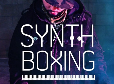 Synth Boxing