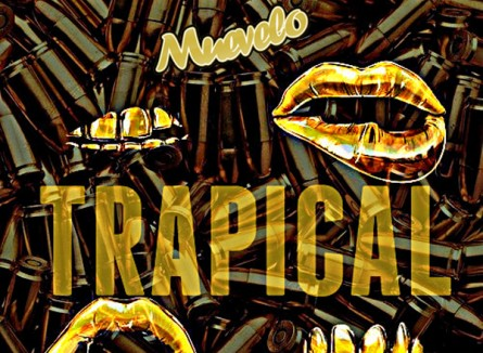 Sunday Hint – Trapical