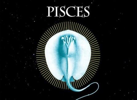 PISCES (Barcelona)